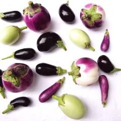Hoe maak ik aubergine klaar? (VIDEO)